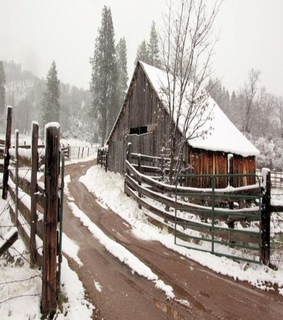 country living, winter and farm