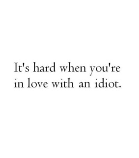 funny, qoute and idiot