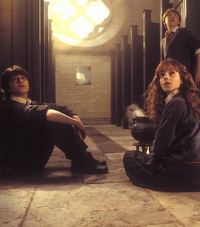 harrypotter, danielradcliffe and hermionegranger