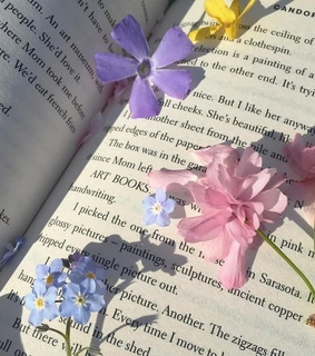 colour, flowers and read
