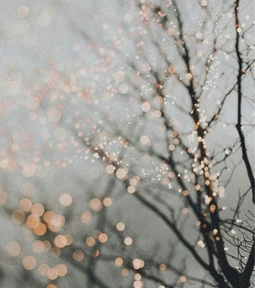 december, fro and lluvia