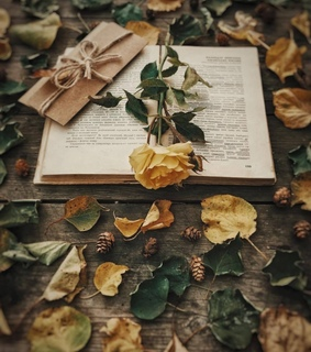 flowers, roses and books and roses