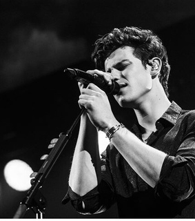 shawn mendes, that sharp jawline and aesthetics