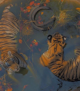 tiger aesthetic, grunge and fade