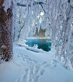 nature, lapland and ice