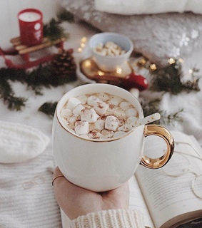 winter, hotchocolate and hotcocoa