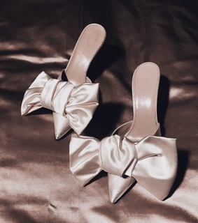 bows, satin and shoes