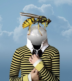 bees, art and stripes
