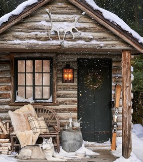 cozy, cosy and cabin