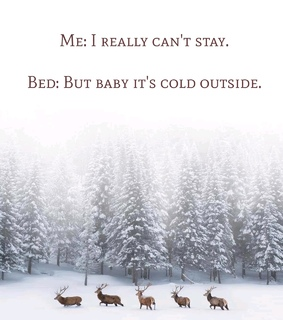quotes, funny quotes and snowflakes