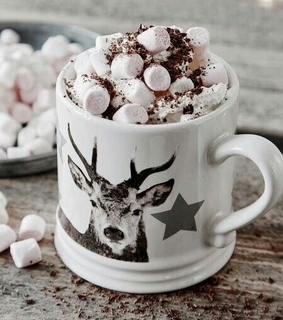 winter, hot cocoa and christmas