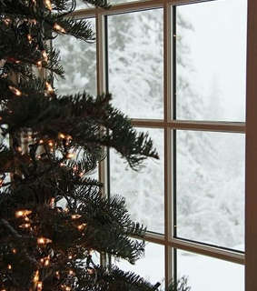 house, christmas tree and winter view