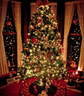 christmas tree, happiness and winter