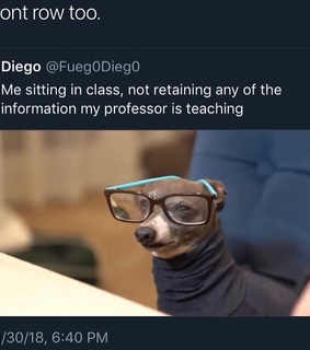 lmao, students and worried
