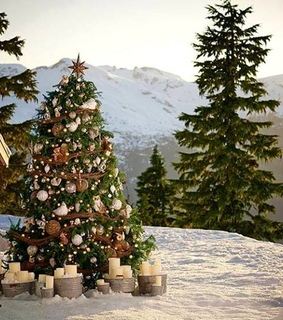 white, snowing and christmas tree