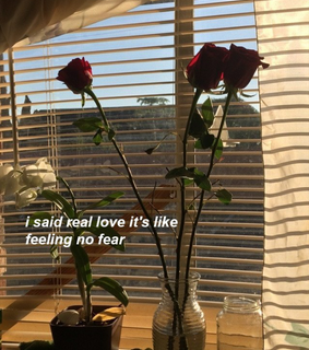 cherry, real love and alternative