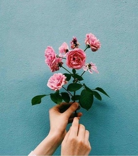 we heart it, flowers and tumblr flowers