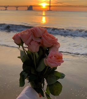 water, seascape and aesthetic flowers