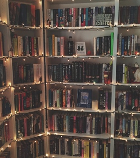 harry potter, my bookshelves and booksself