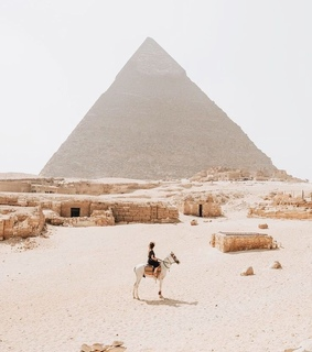 egypt, camel and aesthetic