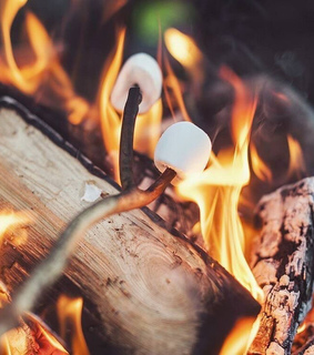fire, marshmallow and warm and cozy
