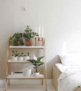 eco, awesome and room