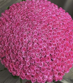 fashion, classy and roses