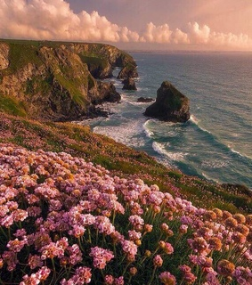 motherearth, flowers and nature
