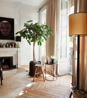 love, appartement and decoration