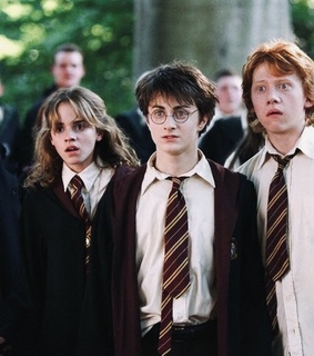 hermione, friends and potter