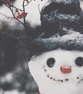 january, snowman and december