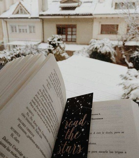 winter, book and peaceful