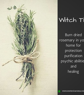 rosemary, magick and witchcraft