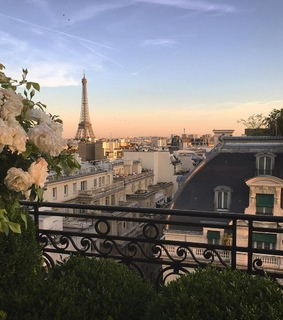 the eiffel tower, flowers and france