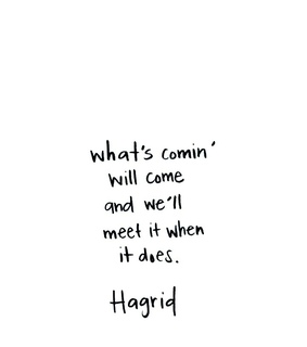 harry potter, quotes and hagrid