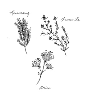 grandma, rosemary and chamomile