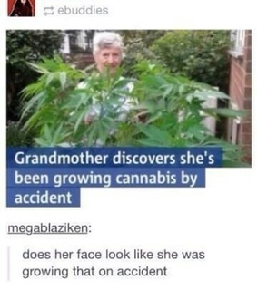 grandma, weed and funny