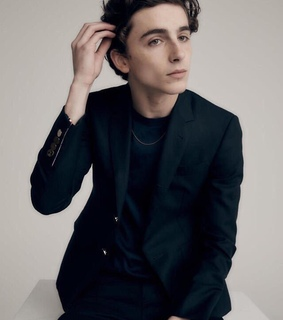 timothee chalamet, actor and boys