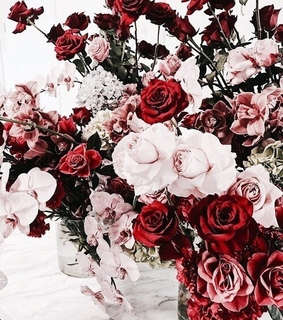 aesthetic, roses and vogue