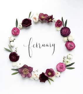 hello february, flower and february