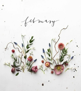 hello february, month of love and we heart it