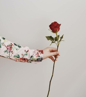hand, sesg and red flower