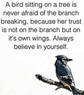 branch, believe and quote