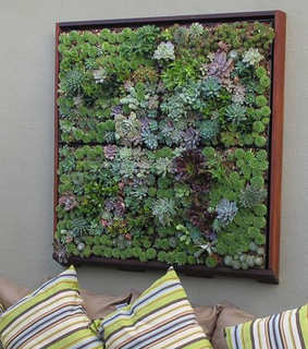 picture frames, reuse and diy projects