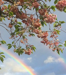 spring aesthetic, aesthetic and rainbow