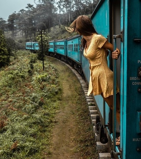 dress, forest and train