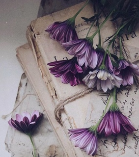 purple, arabic and spring