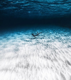 sea, sand and diver