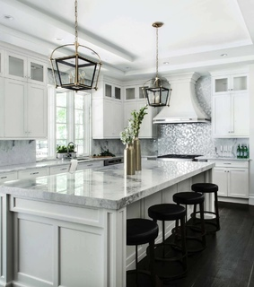 transitional, kitchen design and inspiration