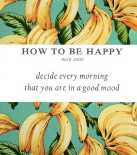 happiness quotes, happiness and life